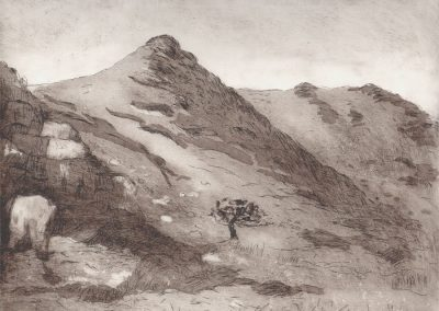 Dartmoor Valley