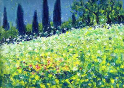 Italy, the wild flower meadow