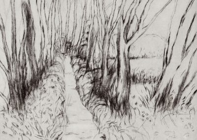 Madron Pathway, drypoint by Elizabeth Perry